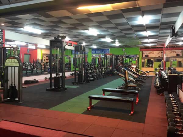 Thi công sàn cao su EPDM, giả gỗ, phòng gym tại TP Vinh Nghệ An